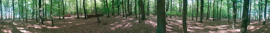 Adliges-Holz